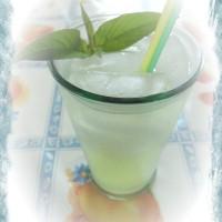 Limonata alla Salvia Elegans