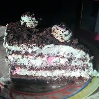 Torta Foresta Nera (con le amarene e il maraschino)